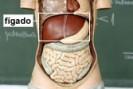 Hepatite c: cerca de 70% dos usuários de drogas injetáveis são expostos