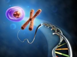 adn-cellule-andrea-danti-267x200