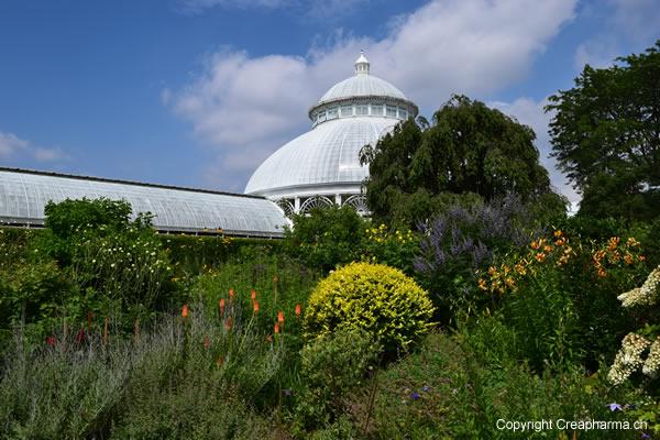 jardin-botanique-new-york-dome-1