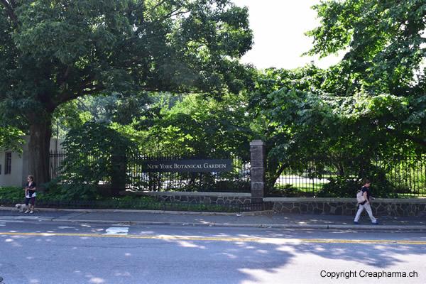 jardin-botanique-new-york-entree-train